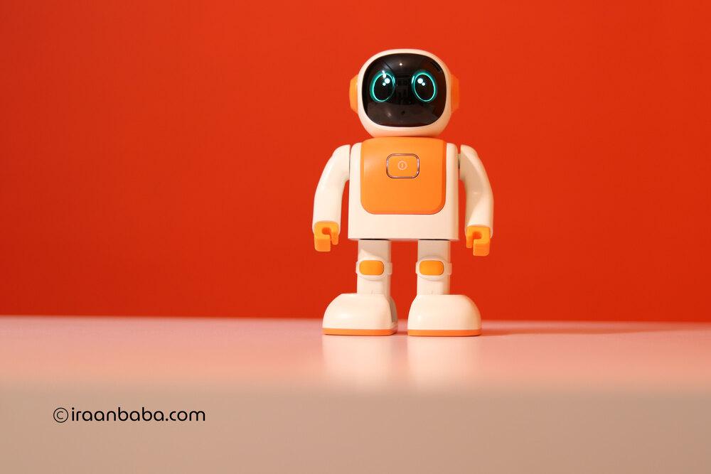 ربات اسباب بازی رابرت