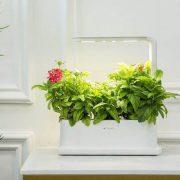 گلدان هوشمند رومیزی
